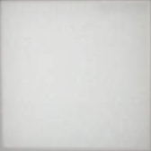 EU4 P.White